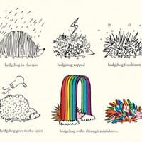 Hedgehog Goes Rainbow - small view