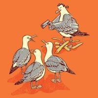 Steven Seagull - small view
