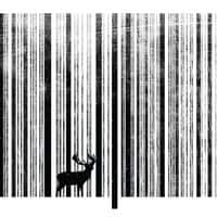 To Scan a Forest - small view