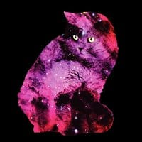 Celestial Cat - small view