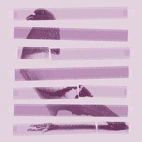 Striped Bird - small view