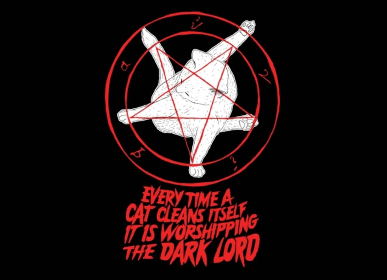 Every Time A Cat Cleans Itself It Is Worshipping The Dark
