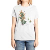Vegetabilis Pizzarius - womens-extra-soft-tee - small view