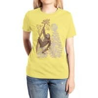 Sloth Wars - womens-extra-soft-tee - small view