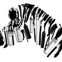 Brushes and Zebra - small view