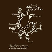 Dragon Phylogeny - small view