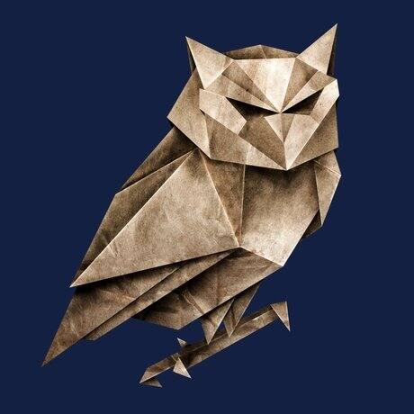 owls t-shirts