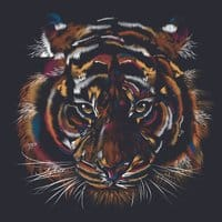 Wild Tiger - small view