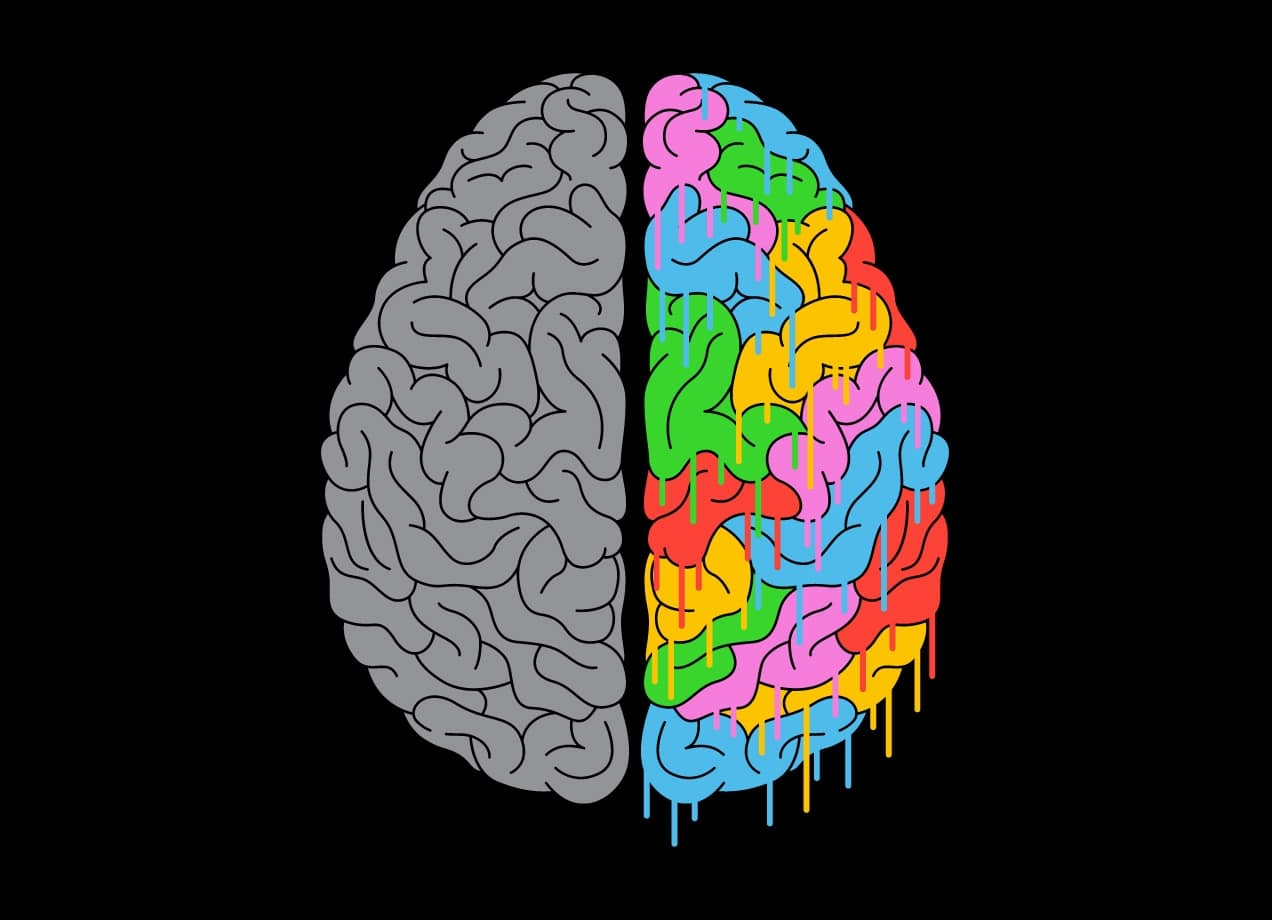 A Brain Of Two Halves By Tim Easley Threadless