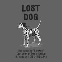 Lost Dog - small view