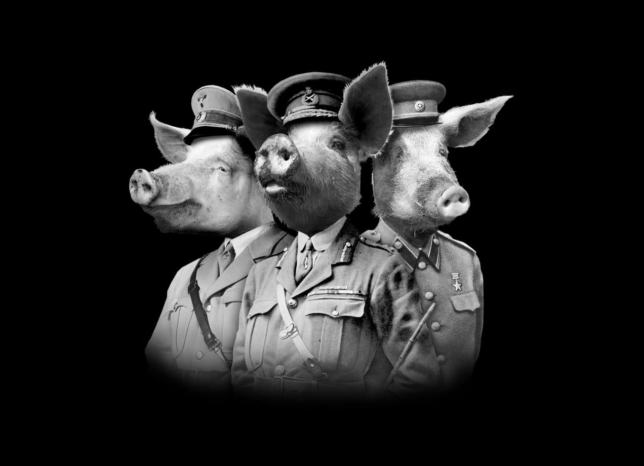 War Pigs By Josh Billings