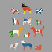 Many Nations Under Dog - small view