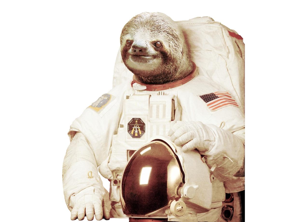 Astronaut Sloth by Bakus | Threadless