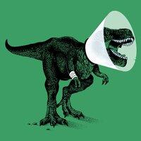 Rex, No! - small view