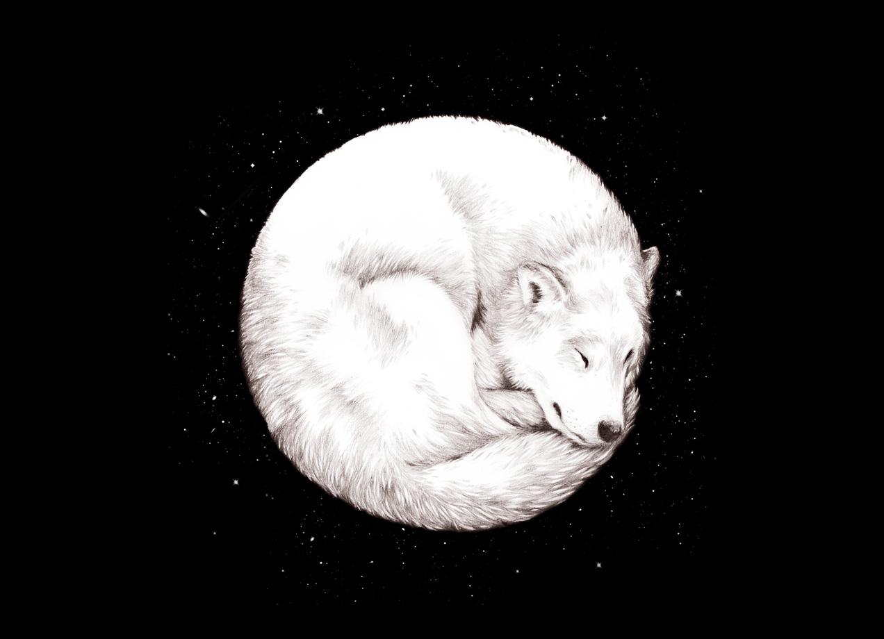 The Howl Of The Moon By Daniel Teixeira Threadless