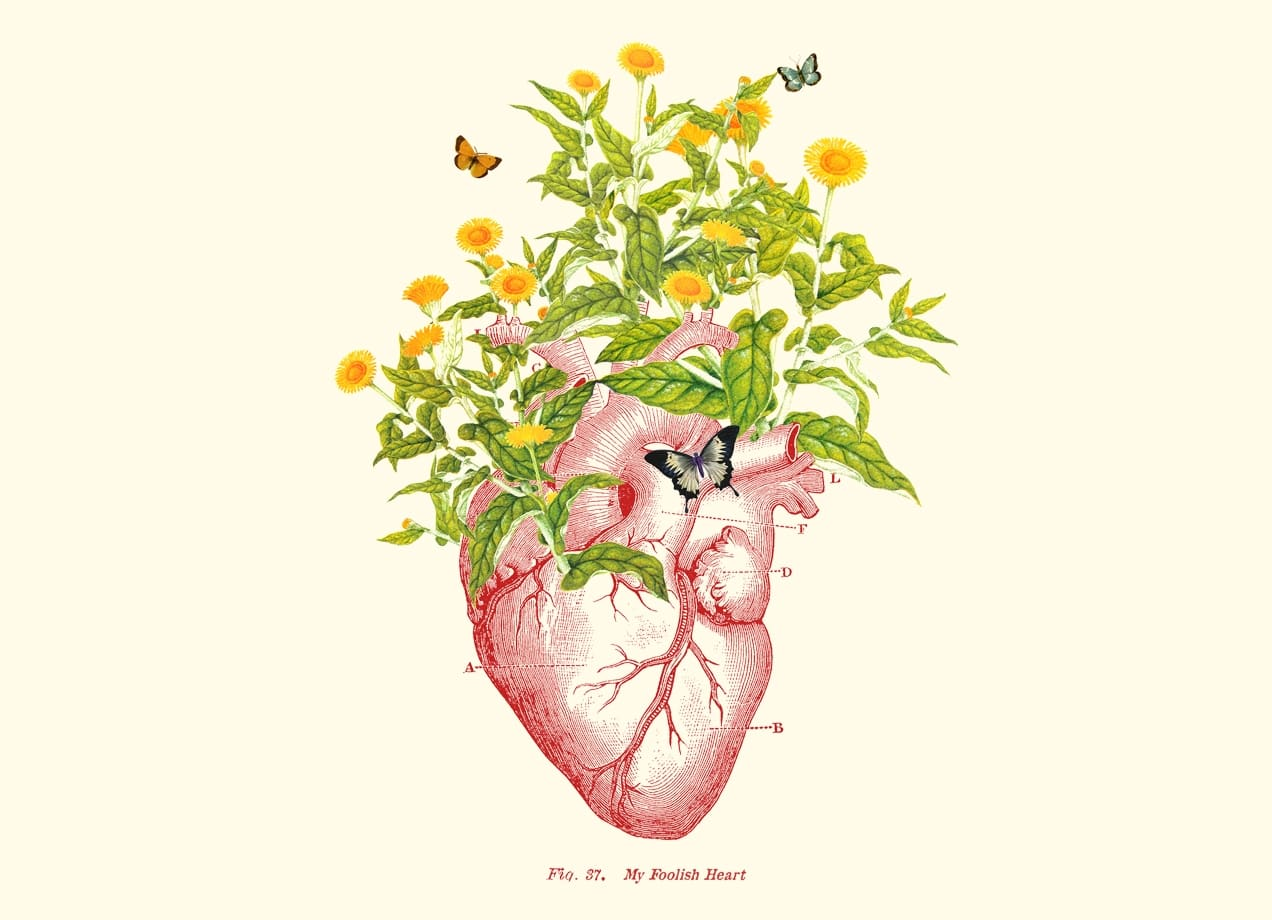 My Foolish Heart by Budi Satria Kwan Threadless