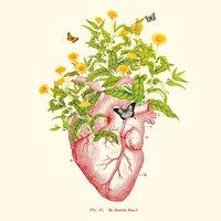 My Foolish Heart - small view