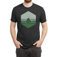 Yosemite - mens-triblend-tee - small view