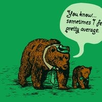 The Average Bear - small view