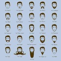 Facial Hair Club For Men - small view