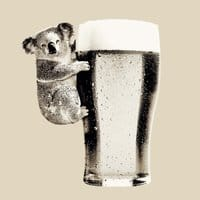 Koala Loves Beer - small view