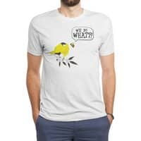Birds & The Bees - mens-triblend-tee - small view