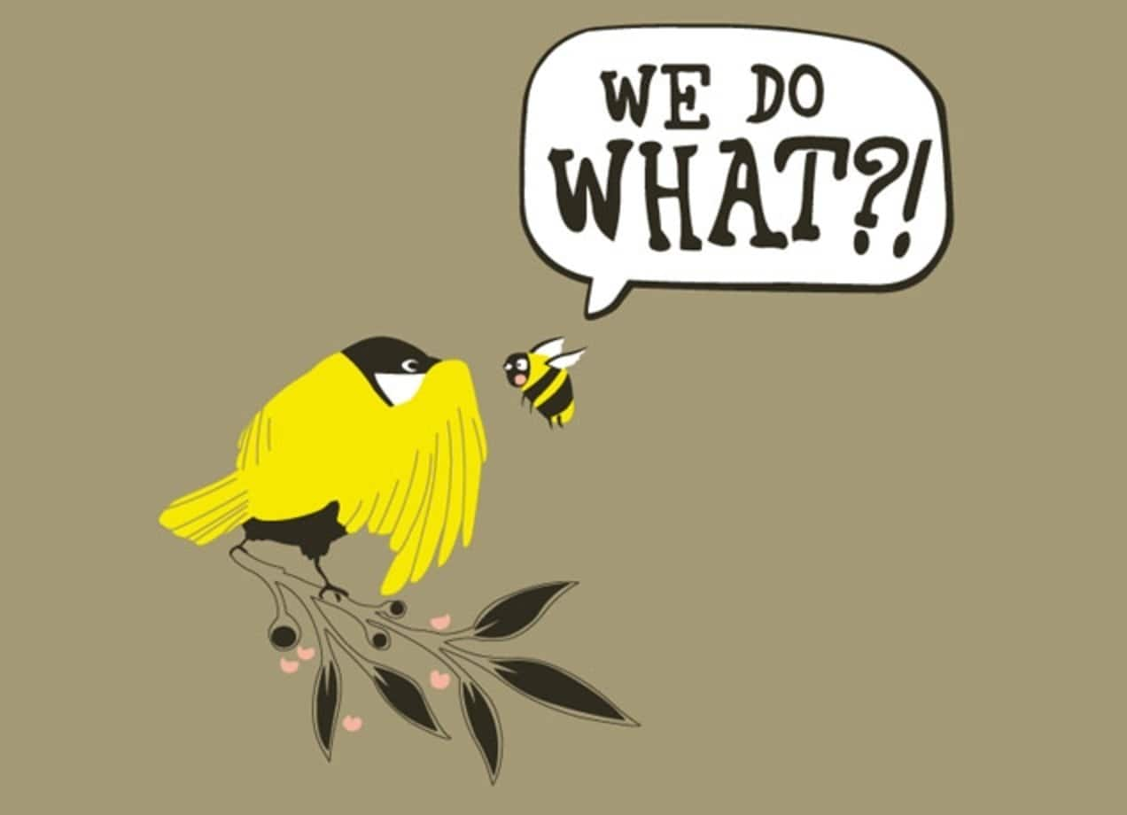 Image result for birds and bees