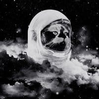 Catstronaut - small view