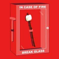 In Case of Fire - small view