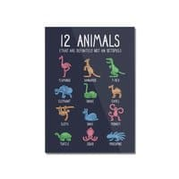 12 Animals (That Are Definitely Not An Octopus) - vertical-mounted-acrylic-print - small view