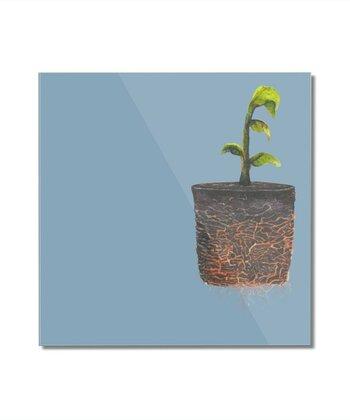 Pocket Plant