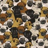 Social Pugs - small view