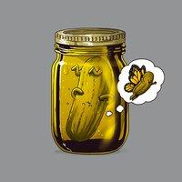 Pickle Metamorphosis - small view
