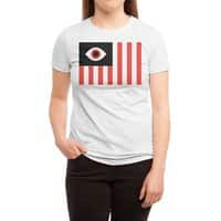 Stares and Stripes - womens-triblend-tee - small view