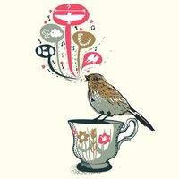 Understanding Bird Song - small view