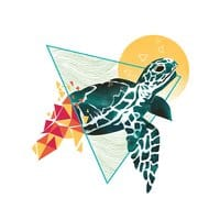 Geometric Turtle - small view