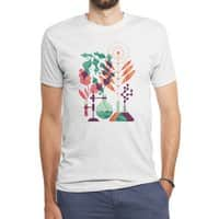 Botany - mens-triblend-tee - small view