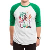 Botany - triblend-34-sleeve-raglan-tee - small view