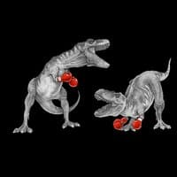 T-Rex Boxing (Black Variant) - small view
