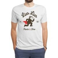 Liar Liar… - mens-triblend-tee - small view