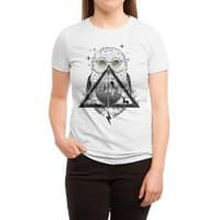 Owls and Wizardry - womens-triblend-tee - small view