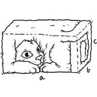 3D CAT - small view