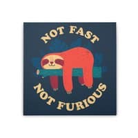 Not Fast, Not Furious - square-stretched-canvas - small view