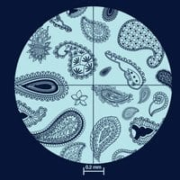 Paisley Paramecium - small view